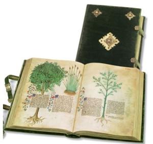 Historia Plantarum – Panini/Treccani