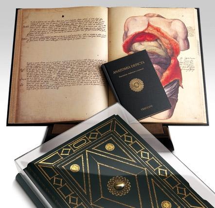 Anatomia Depicta – Treccani