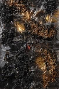Angela Cacciamani – Plastica, segatura, nero e oro