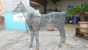 Nicola Cuppari – Cavallo