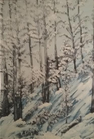 Renzo Iotti – Trasparente inverno