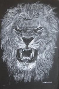 Avanzini Damiano – Lion