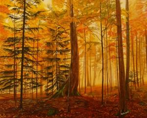 Buccigrossi Floriano – Luci e ombre del bosco
