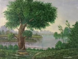 Stangalino Laura – La vecchia quercia