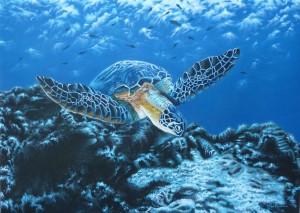 Meloni Paola –  Meraviglie e misteri in fondo al mare
