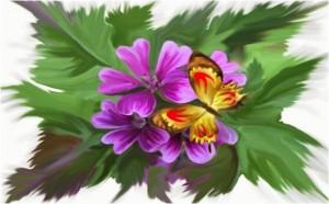 Biagioli Nikla – Farfalla