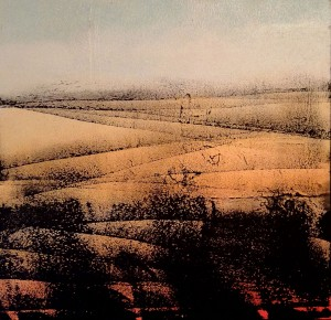 Giuliana Donati – Paesaggio