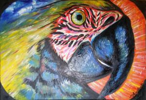 Angelica Di Francesco – Parrot