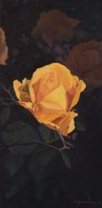 Luca D'amore – Rosa gialla