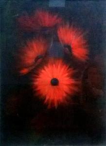 Giuseppe Incerti – Quattro fiori rossi