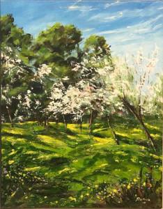 Balleva – Mandorli in fiore