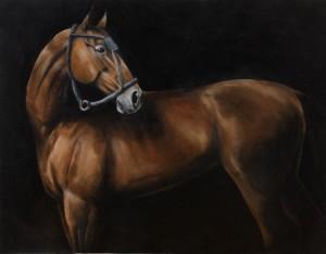 Tomas Nati – Cavallo Andaluso