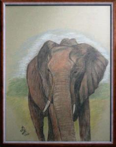 Barbara Borsatti – Elefante
