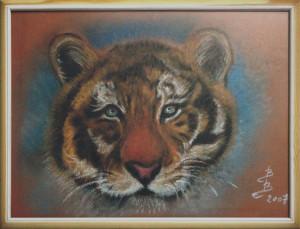 Barbara Borsatti – Sguardo di tigre
