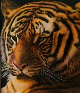 Rolando Conti – Tigre