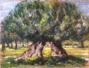 Pino Romanò – Ulivi Salentini