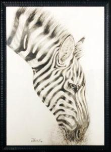 Daniela Pintus – Zebra africana
