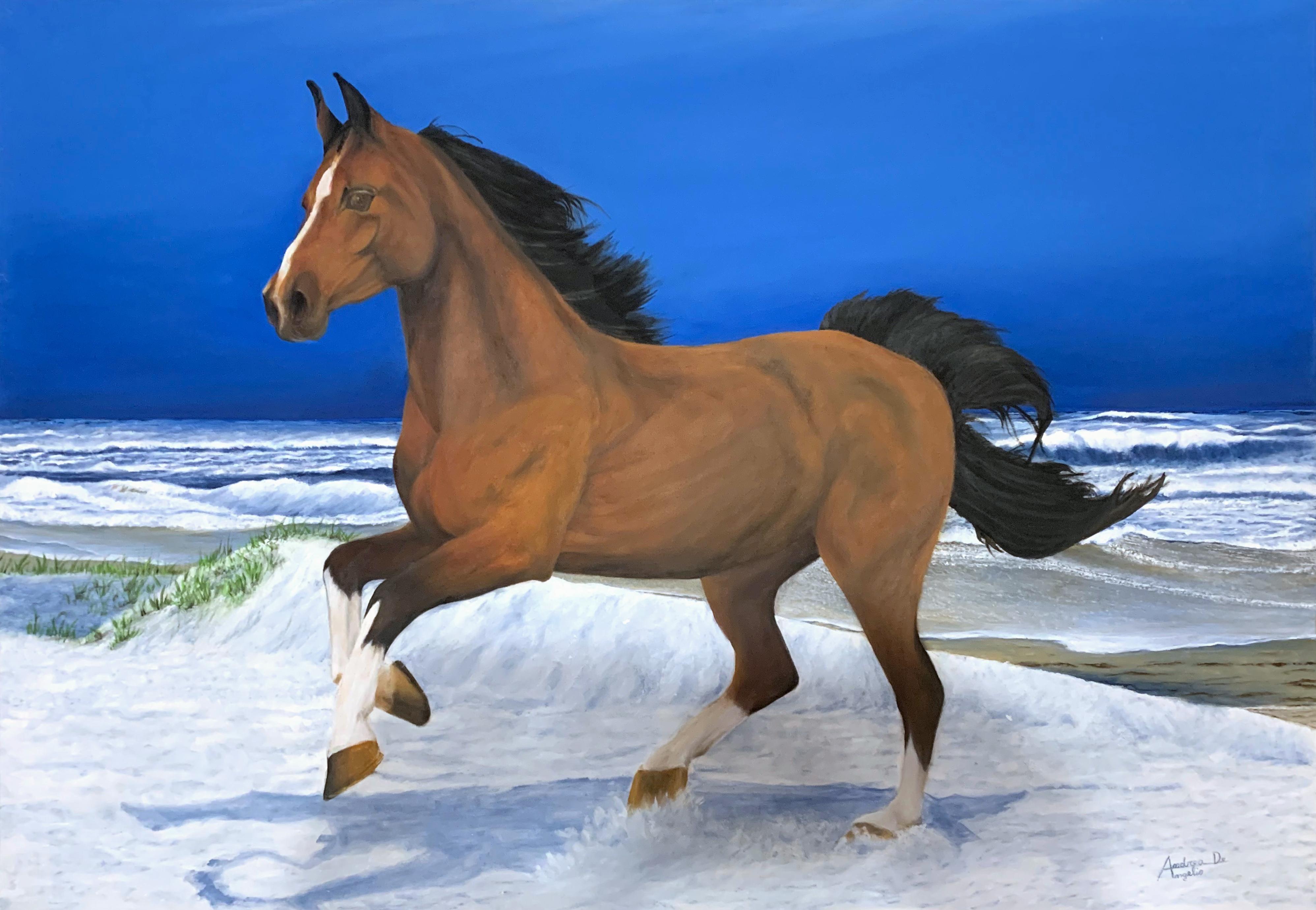 Andrea De Angelis – Cavallo