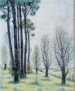 Bruno Di Pietro – Paesaggio