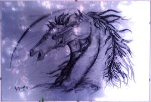 Minaya – Cavalli