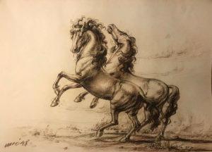 Nesei – Cavalli