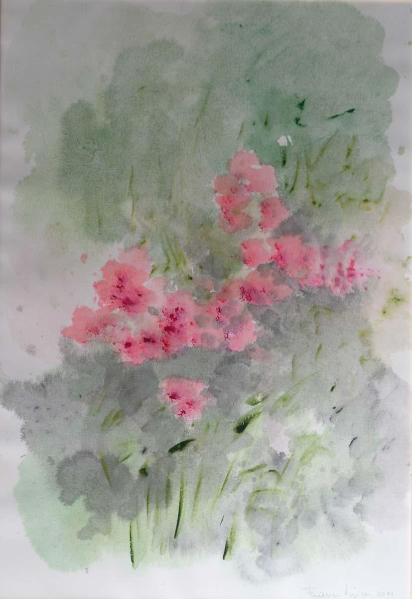 Franco Vivian – Cespuglio con rododendri