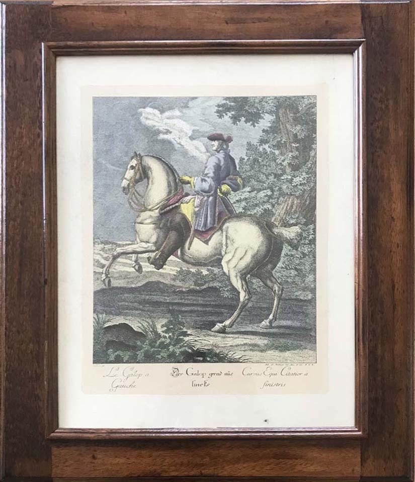 Da Johann Elias Ridinger – Scuola di equitazione