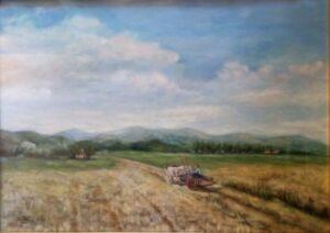 Enea Tallone – Campo di grano
