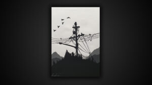Luca Azzurro – Black and white electric pole