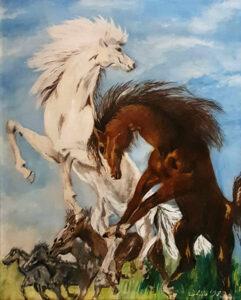 Coletta – Cavalli