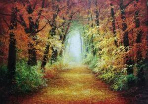 Ettore Marinelli – Autunno boschivo