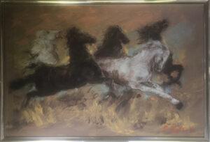 Ajello – Cavalli in corsa